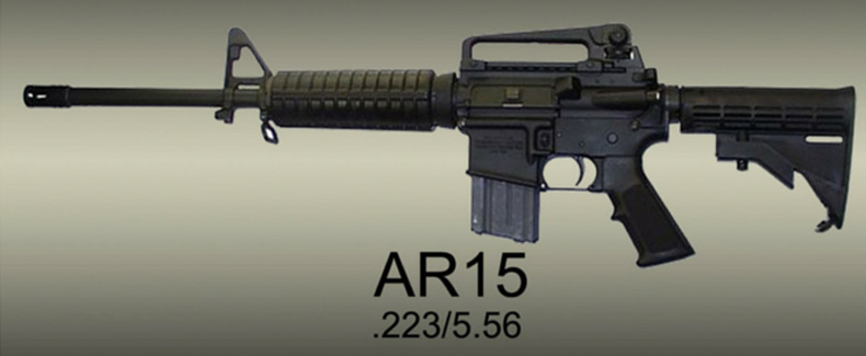 The AR15 – The Facts – Infographic
